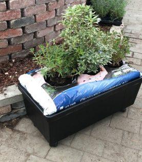 Homefarm with plants