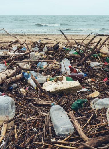 The environment – we care!